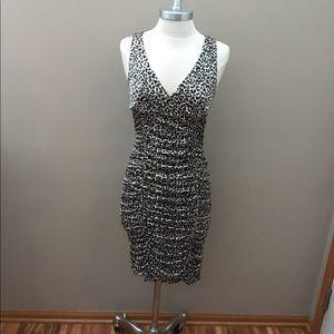 Charlotte Russe Animal Print Dress